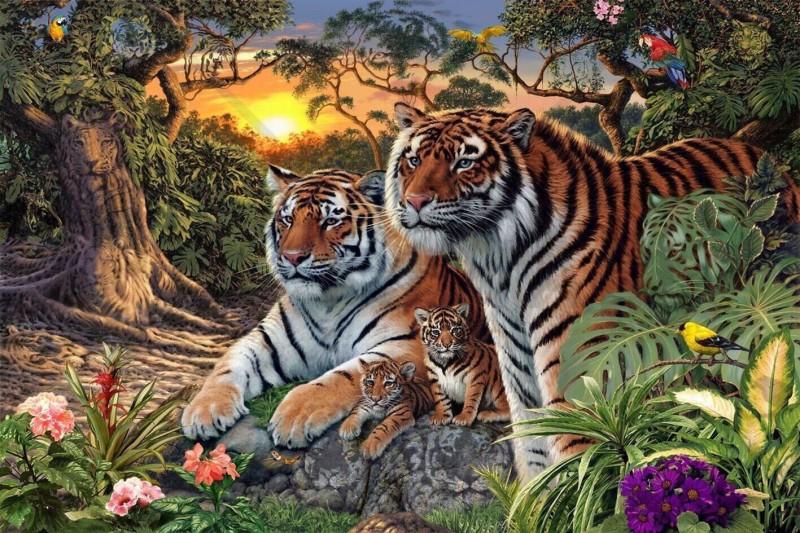 ¿Cuántos tigres eres capaz de ver en la imagen?